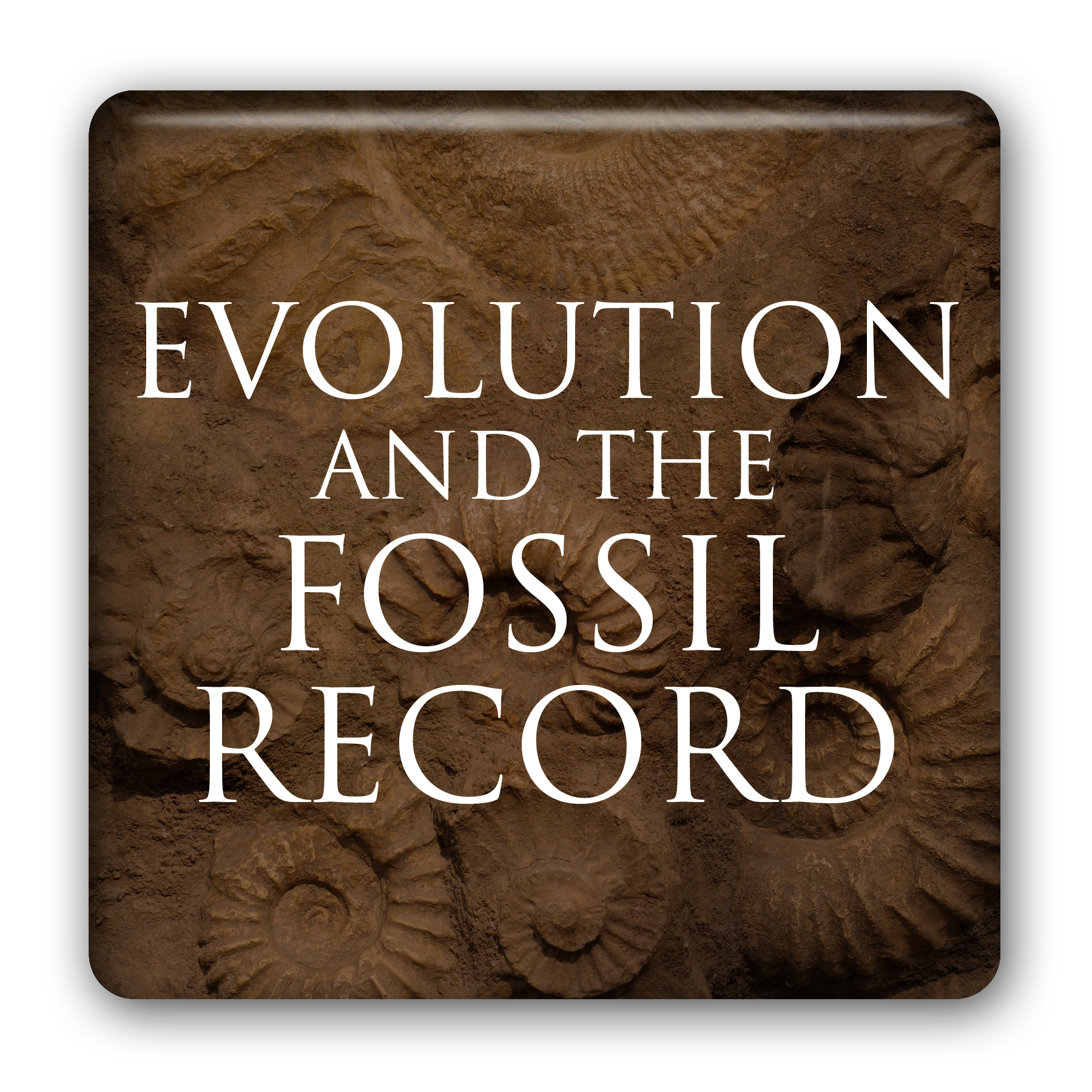 Evolution and the Fossil Record (Listen & Learn Course) Hugh Ross; Fazale Rana Image