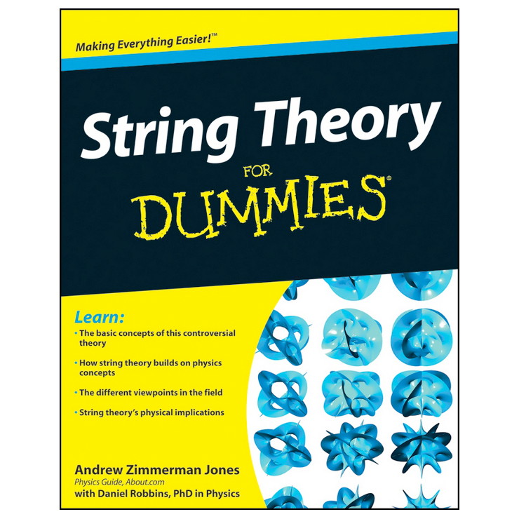 String Theory for Dummies (softcover) Image