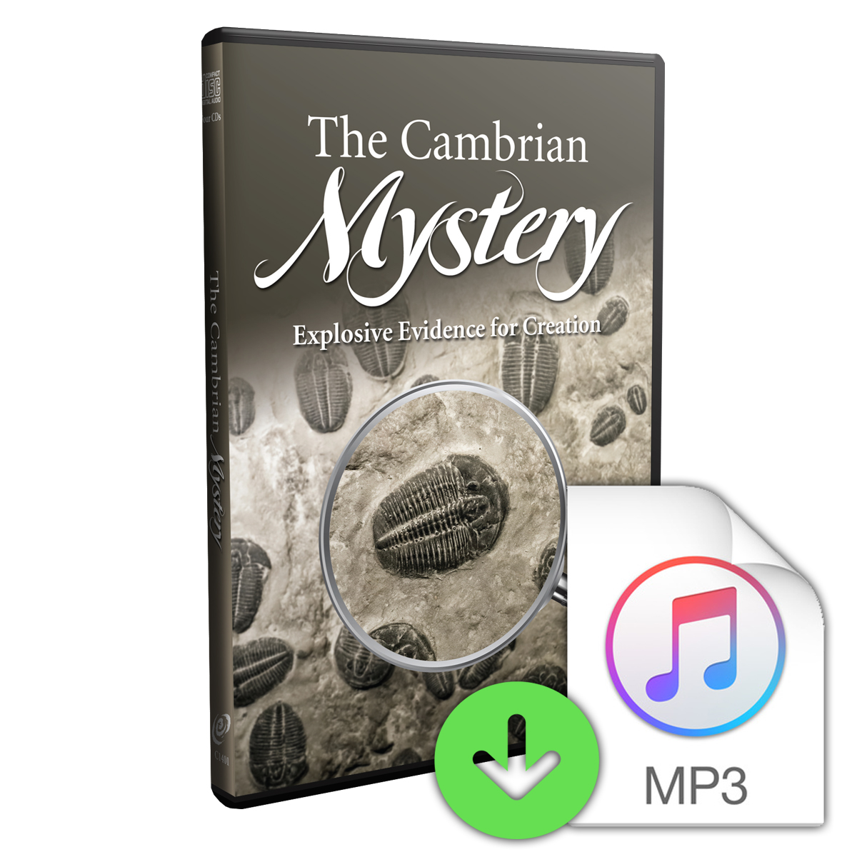 The Cambrian Mystery: Explosive Evidence for Creation (Downloadable MP3) Image